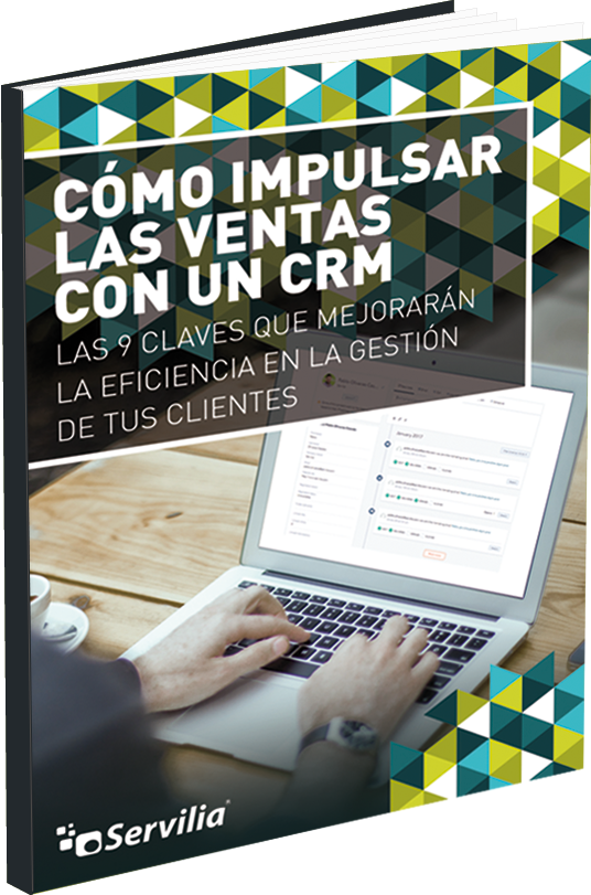 libro-guia-CRM-vn (4).png